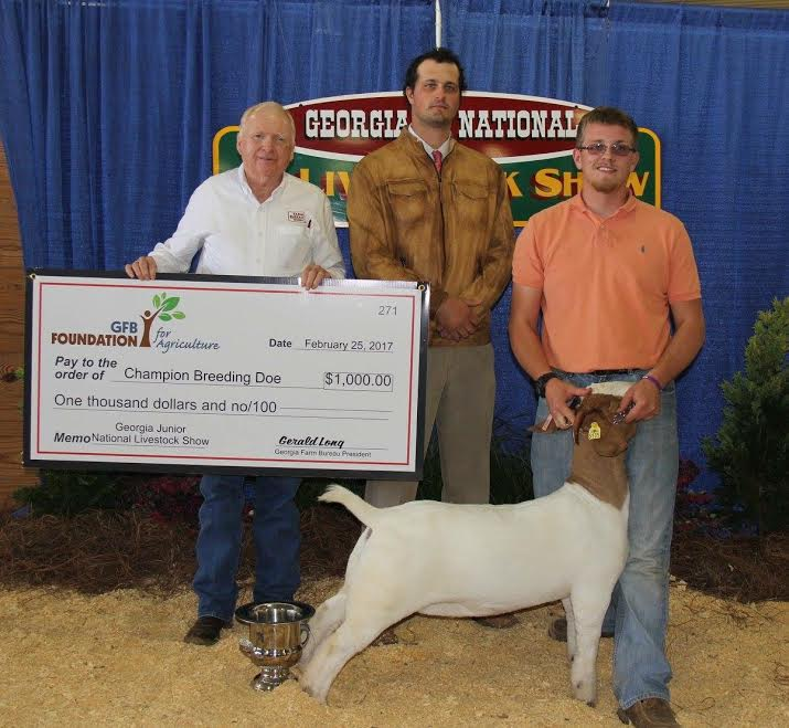 FFA Members Compete In State Livestock Show