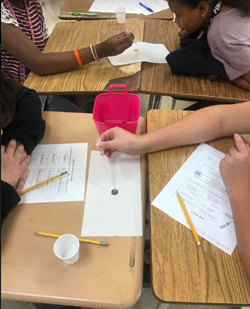 WCMS Scientific Method - Mrs. Couch 2019